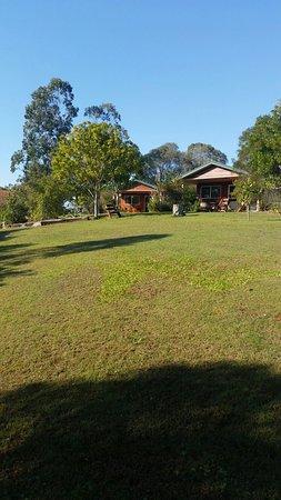 Amamoor, Australia: 20160801_085551_large.jpg