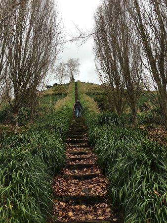 Te Puke, Nueva Zelanda: photo0.jpg