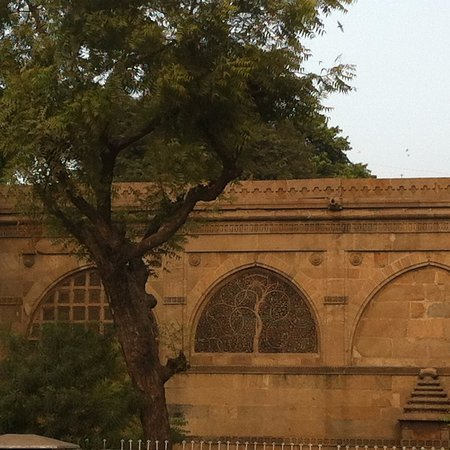 Sidi Saiyed's Mosque: Another view of the carvings on the wall of Sidi Saiyed mosque
