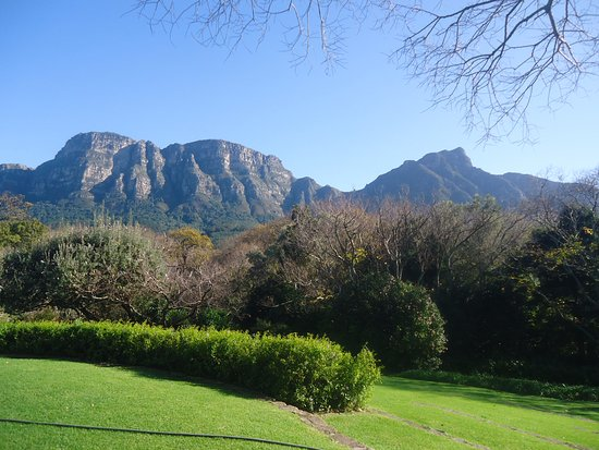 Vineyard Hotel: Hotel grounds