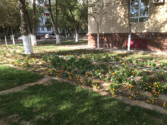 Baikonur, Kazakhstan: Gardens outside the hotel.