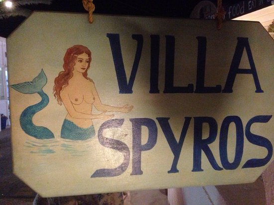Villa Spyros studios