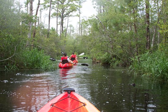 Outer Banks Kayak Adventures