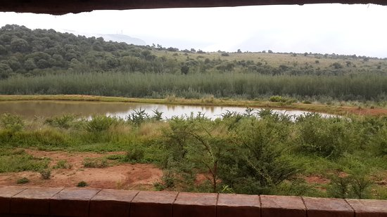 Hekpoort, Sudafrica: Hippos live there