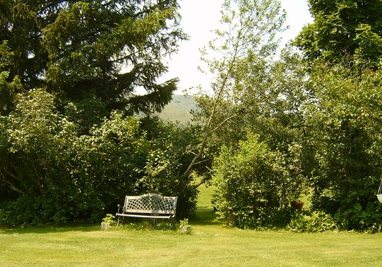 Pittsfield, VT: Garden