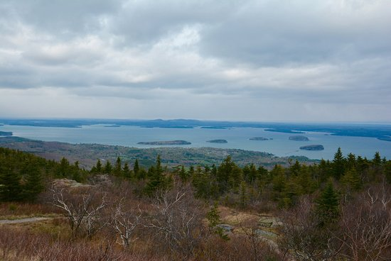The Bayview: Acadia National Park