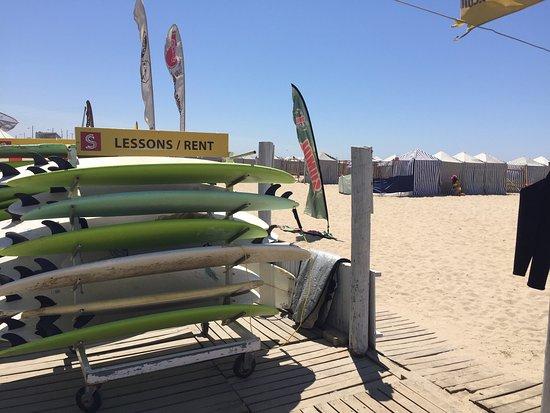 Surfing Life Club: photo1.jpg