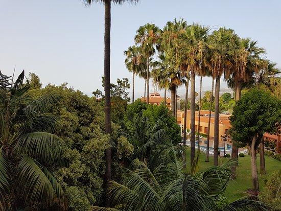 Hotel Botanico & The Oriental Spa Garden: Aussicht in den Garten von einem Balkon in der 2. Etage