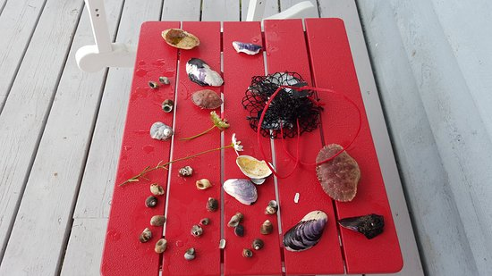 Lockeport, Canadá: Treasures from the sea!