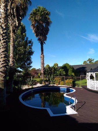 Palms Hotel: 暫停使用的小游泳池