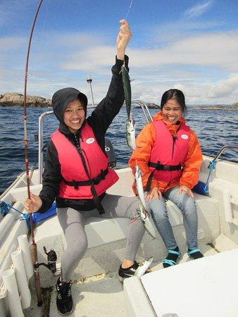 Korshamn, Norge: makreel in overvloed