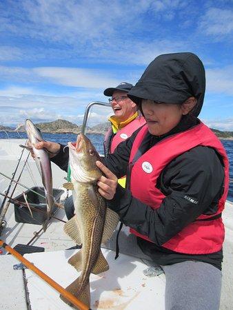 Korshamn, Norge: genoeg te vissen