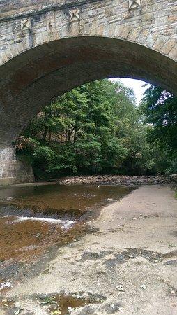 Whitfield, UK: IMAG0123_large.jpg