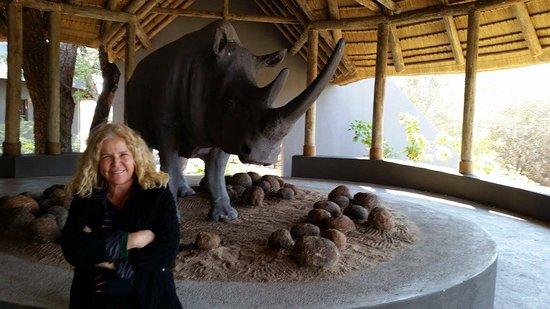 Zdjęcie Mala Mala Private Game Reserve