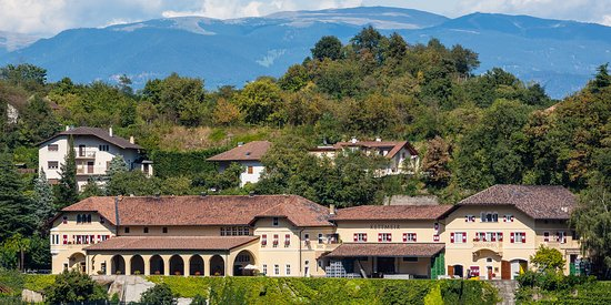 Caldaro sulla Strada del Vino, Italia: Kettmeir - cantina