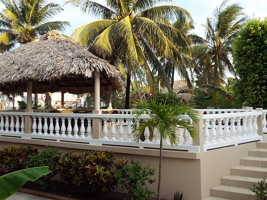 Gambar Iguana Reef Inn
