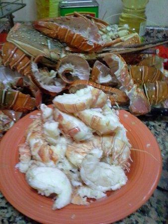 Cabo Ledo: CaboLedo2015_curry dinner prep