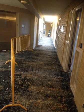 Embassy Suites by Hilton Orlando - International Drive / Convention Center : Corridor outside guest room- dirt, barriers and builders kit