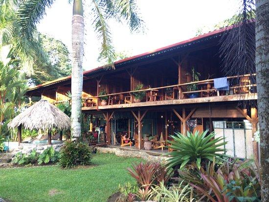 Hotel Banana Azul: photo1.jpg