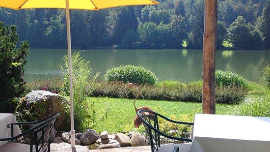 Landgasthof Trattnig: view from the hotel
