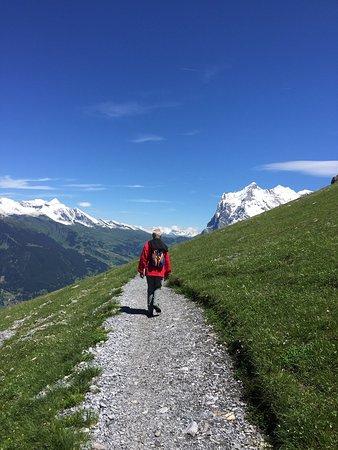 Grindelwald, Switzerland: photo1.jpg