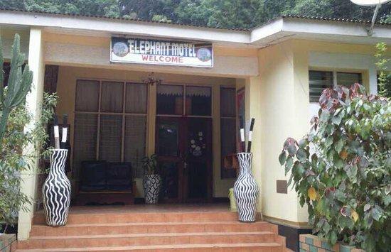 Elephant Motel