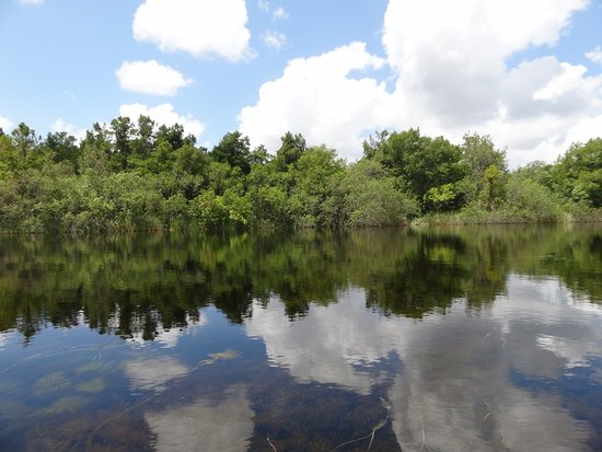 Everglades Kayak Company: Amazing nature in the Everglades