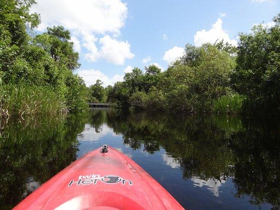 Everglades Kayak Company: Turner River