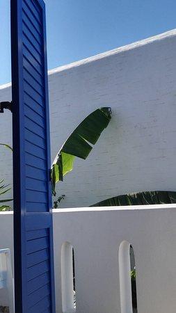 Zdjęcie Hotel Margarita