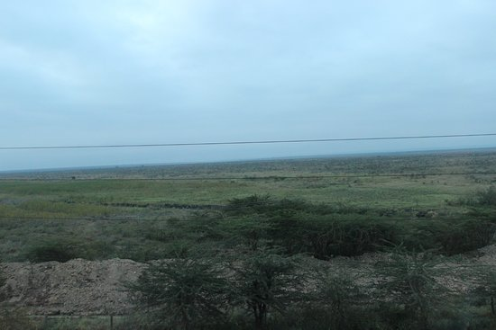 Ole Sereni: View of the Nairobi National Park from 3rd floor