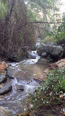 jardin botanico nacional cascada