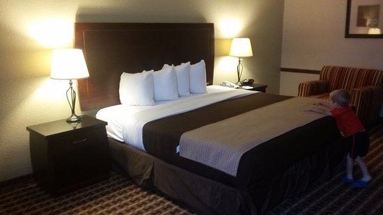 BEST WESTERN Johnson City Hotel & Conference Center: Bed