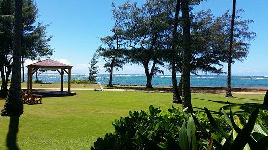Hotel Coral Reef: Snapchat-1314523432472740608_large.jpg