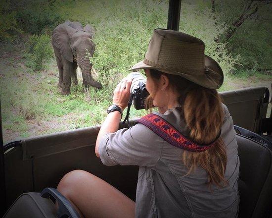 Flight of the Eagle Safaris & Tours Bild