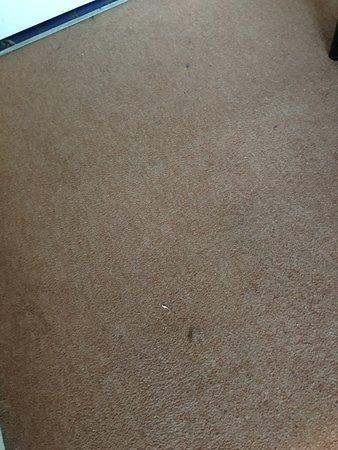 Ossian's Hotel: La moquette tachée au sol de la chambre