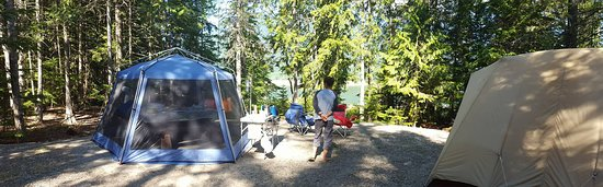 McDonald Creek Provincial Park: Large campsites with view of the lake