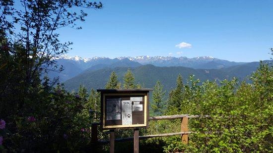 Mount Walker: 20160512_111625_large.jpg
