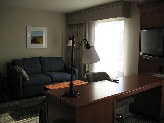 Hampton Inn & Suites Cedar Rapids - North: View of the desk television and sofa
