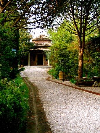 Borgo Paraelios: drive in entrance