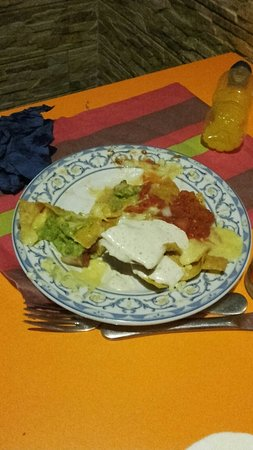 Cactus Alicante : IMG-20160802-WA0005_large.jpg