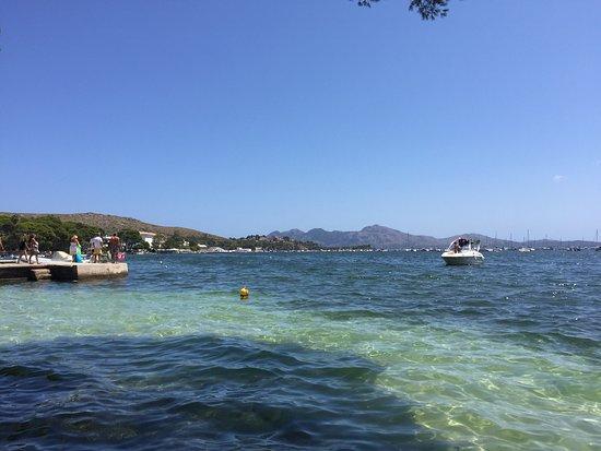 Port de Pollença Beach - Picture of Port de Pollenca Beach, Port de Pollenca ...