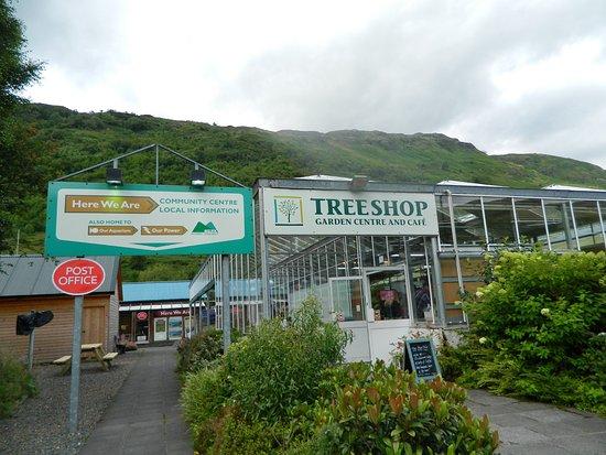 Clachan, UK: Treeshop Garden Centre
