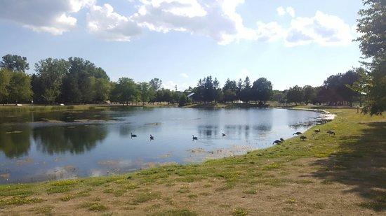 Andrew Haydon Park
