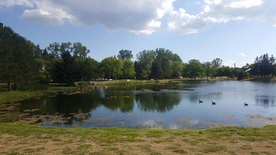 Ottawa, Canada: 20160802_165427_large.jpg