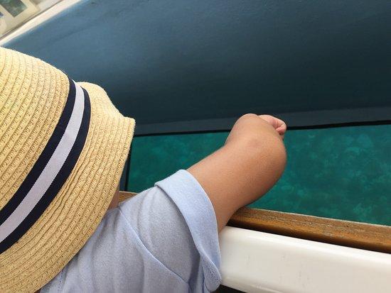 Oga Glass Bottom Boat : photo2.jpg