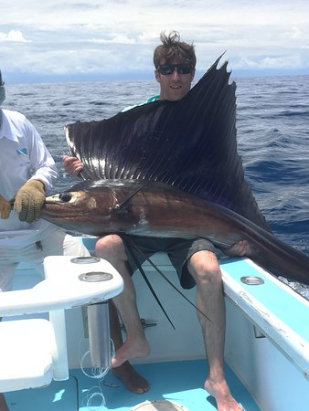 Bluefin Sportfishing & Tours