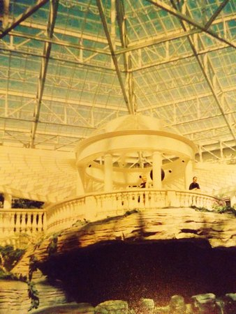 Gaylord Palms Resort & Convention Center: Light and glass abounds