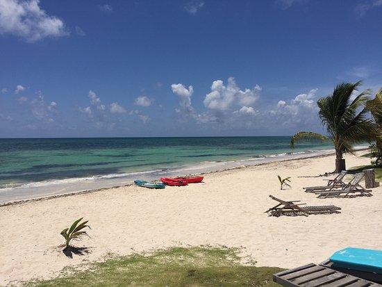 Mayan Beach Garden 사진