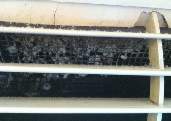 Hewitt, Teksas: Mold in A/C vents