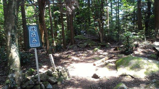 Kihoku-cho, Japón: 便石山の山頂です。